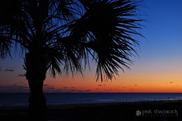Winter's Sunset - Isle of Palms