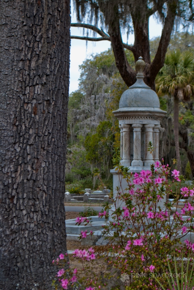 """Life and Death"" - Azaleas bloom near a grave at Bonaventure Cemetery in Savannah, GA."