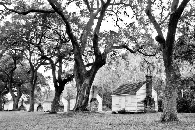 Clapboard slave cabins at McLeod Plantation on James Island, SC.