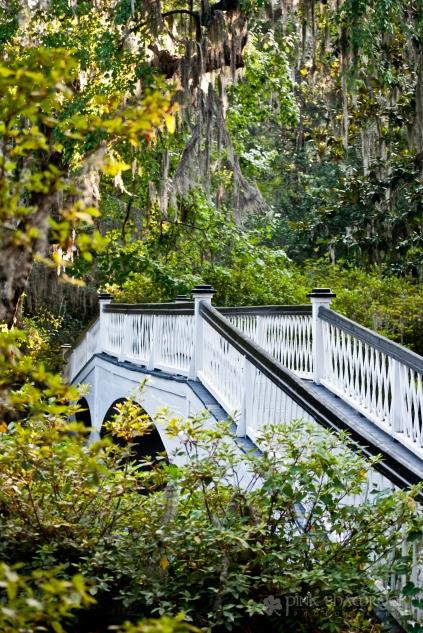 Romantic bridge at Magnolia Plantation in Charleston, SC.