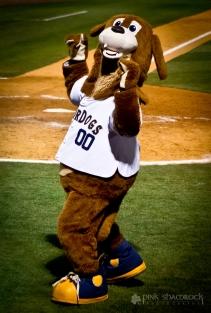 """Charlie T. Riverdog"" - Primary mascot for the Charleston Riverdogs baseball team."